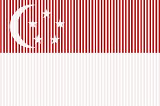 flag-singapore-233