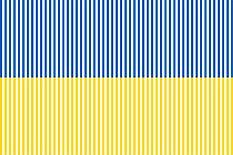 flag-ukraine-233
